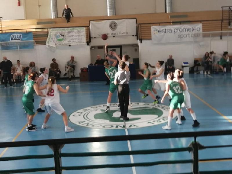 https://www.basketmarche.it/immagini_articoli/01-04-2019/interrompe-campo-basket-girls-ancona-serie-positiva-porto-giorgio-basket-600.jpg