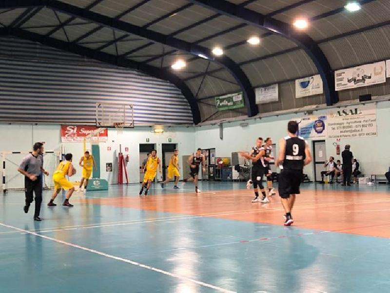 https://www.basketmarche.it/immagini_articoli/01-11-2019/super-paolini-guida-camb-montecchio-vittoria-campo-dinamis-falconara-600.jpg