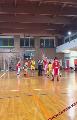 https://www.basketmarche.it/immagini_articoli/01-12-2018/prova-forza-leone-ricci-chiaravalle-campo-dinamis-falconara-120.png