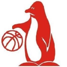 https://www.basketmarche.it/immagini_articoli/02-08-2018/promozione-adriatico-ancona-coach-andrea-moro-vogliamo-far-crescere-i-giovani-ma-inseriremo-qualche-giocatore-esperto--270.jpg