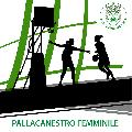 https://www.basketmarche.it/immagini_articoli/02-08-2019/ancona-punto-mercato-insieme-coach-cristiano-gaspari-120.png