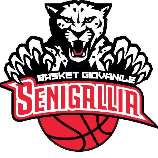https://www.basketmarche.it/immagini_articoli/02-11-2018/basket-giovanile-senigallia-coach-amato-castelfidardo-aspetto-passi-avanti-600.jpg