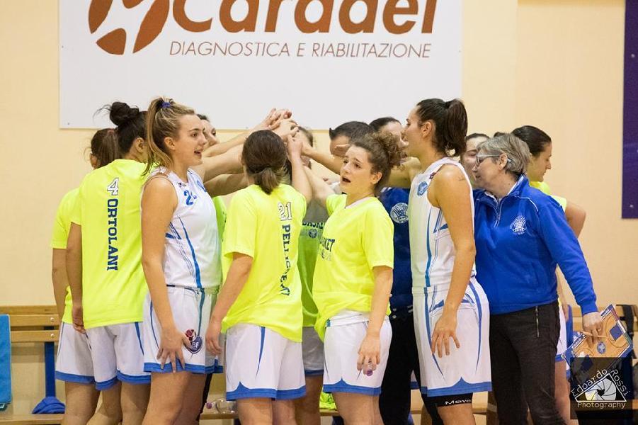 https://www.basketmarche.it/immagini_articoli/03-02-2019/feba-civitanova-sbanca-campo-basket-femminile-bologna-600.jpg