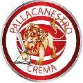 https://www.basketmarche.it/immagini_articoli/03-03-2021/recupero-pallacanestro-crema-espugna-campo-green-basket-palermo-120.jpg
