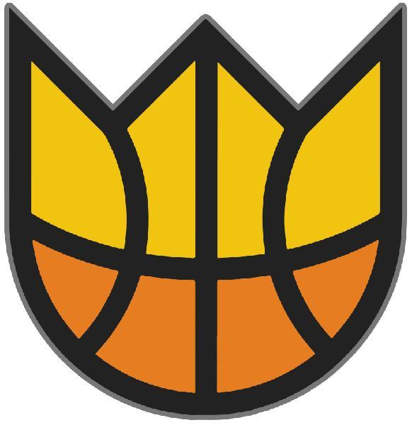 https://www.basketmarche.it/immagini_articoli/03-07-2021/luglio-senigallia-torneo-king-cage-aperte-iscrizioni-600.jpg
