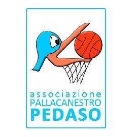 https://www.basketmarche.it/immagini_articoli/03-09-2017/serie-c-silver-la-pallacanestro-pedaso-sfida-san-benedetto-nel-primo-test-prestagionale-270.jpg