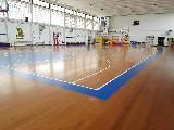 https://www.basketmarche.it/immagini_articoli/04-08-2020/ufficiale-nasce-giulia-basket-prende-posto-giulianova-basket-parteciper-prossima-serie-120.jpg