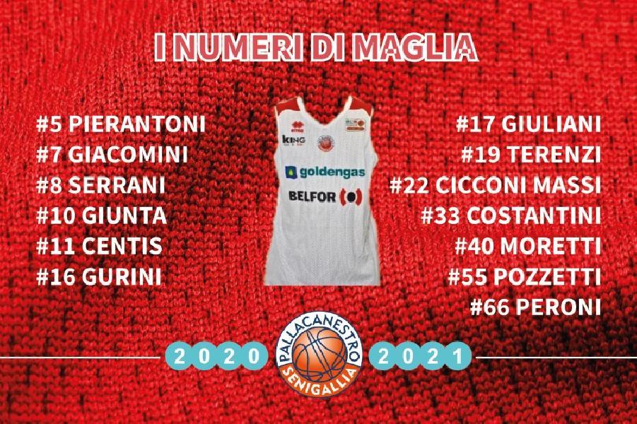 https://www.basketmarche.it/immagini_articoli/04-09-2020/pallacanestro-senigallia-decisi-numeri-maglia-prossima-stagione-600.jpg