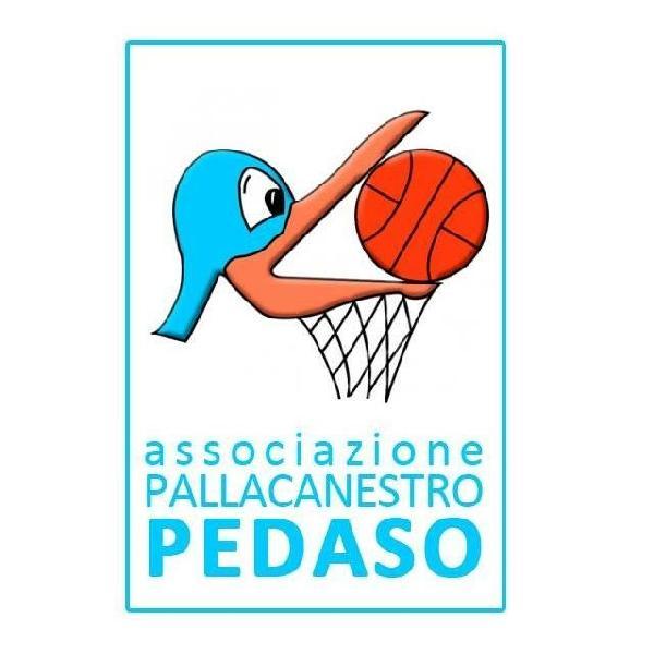 https://www.basketmarche.it/immagini_articoli/04-10-2018/parte-vigor-matelica-campionato-pallacanestro-pedaso-600.jpg
