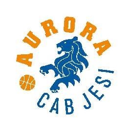 https://www.basketmarche.it/immagini_articoli/04-12-2017/under-13-femminile-il-basket-fermo-sconfitto-dal-cab-aurora-jesi-270.jpg