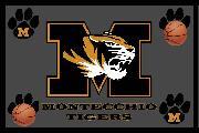 https://www.basketmarche.it/immagini_articoli/05-01-2021/montecchio-tigers-ricominciare-attivit-sarebbe-fine-domani-120.jpg