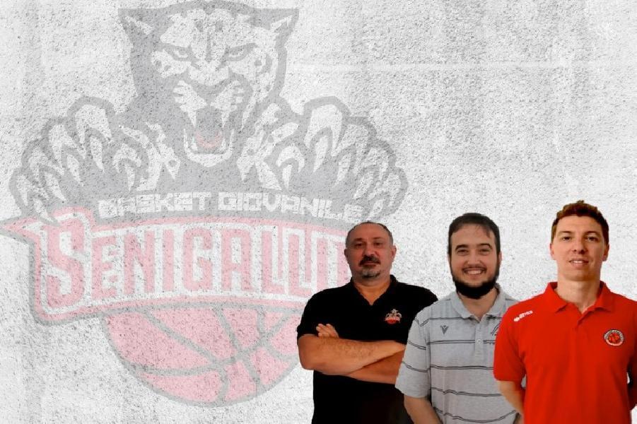 https://www.basketmarche.it/immagini_articoli/05-09-2020/pallacanestro-senigallia-organizzazione-settore-giovanile-600.jpg