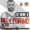 https://www.basketmarche.it/immagini_articoli/06-07-2020/udine-ufficiale-ritorno-francesco-pellegrino-120.jpg