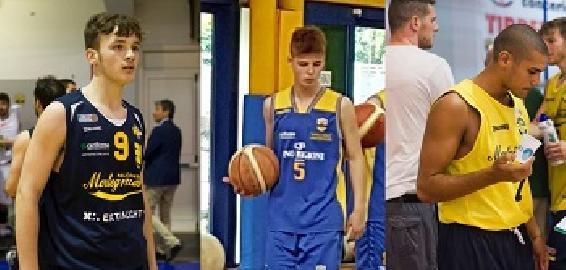 https://www.basketmarche.it/immagini_articoli/06-08-2017/serie-a2-tre-giovani-under-completano-il-roster-della-poderosa-montegranaro-270.jpg