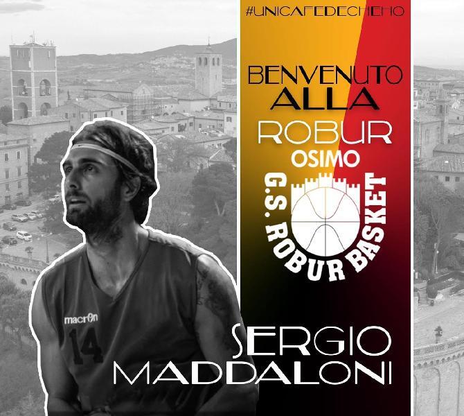 https://www.basketmarche.it/immagini_articoli/06-08-2019/colpo-mercato-robur-osimo-ufficiale-larrivo-sergio-maddaloni-600.jpg