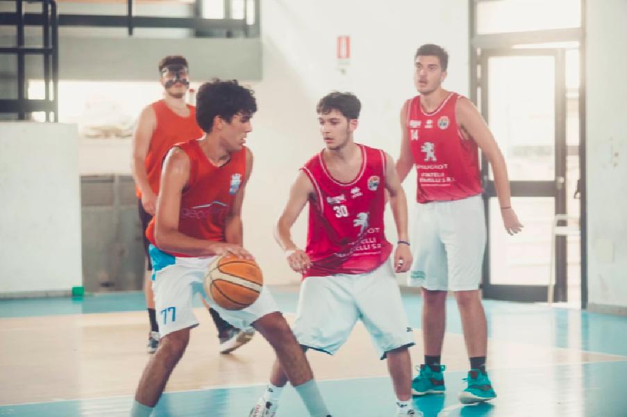 https://www.basketmarche.it/immagini_articoli/06-08-2021/ufficiale-mattia-salerno-mola-basket-2012-600.png