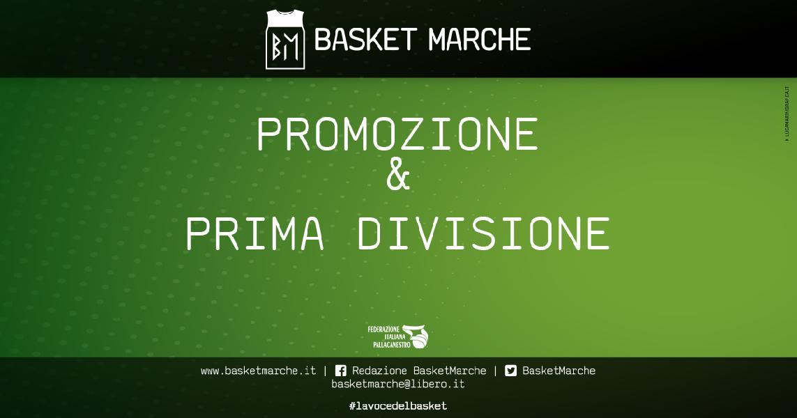 https://www.basketmarche.it/immagini_articoli/07-02-2021/promozione-divisione-grande-partecipazione-riunione-marche-lavora-inizio-aprile-600.jpg