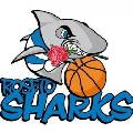 https://www.basketmarche.it/immagini_articoli/07-07-2020/roseto-sharks-spiegano-motivi-hanno-portato-vendita-titolo-sportivo-120.jpg