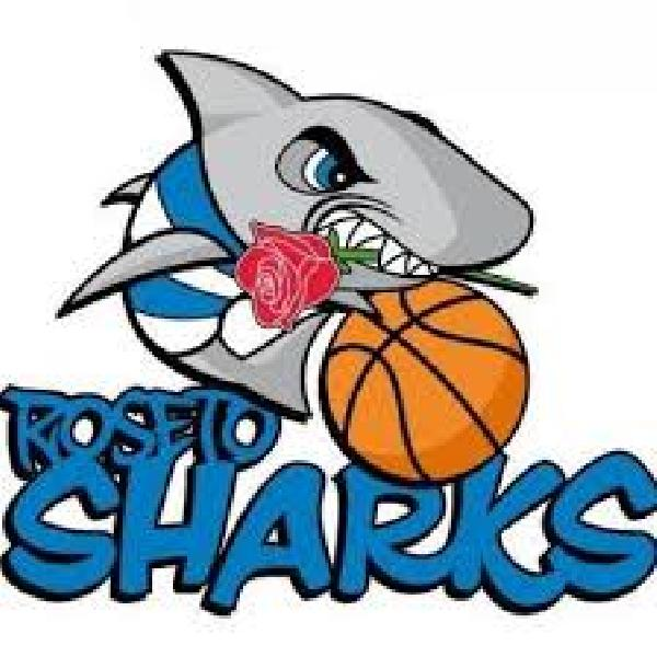 https://www.basketmarche.it/immagini_articoli/07-07-2020/roseto-sharks-spiegano-motivi-hanno-portato-vendita-titolo-sportivo-600.jpg