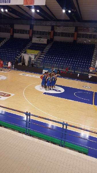 https://www.basketmarche.it/immagini_articoli/07-10-2018/grande-scafidi-trascina-olimpia-mosciano-vittoria-porto-giorgio-600.jpg