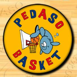https://www.basketmarche.it/immagini_articoli/07-12-2017/promozione-d-il-pedaso-basket-supera-la-sambenedettese-basket-270.png