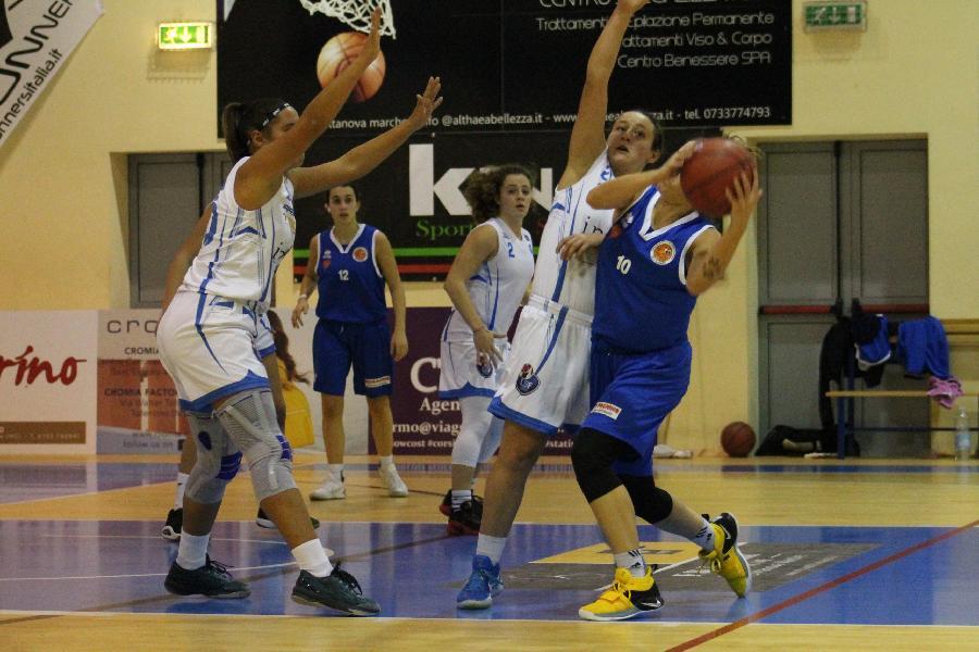 https://www.basketmarche.it/immagini_articoli/07-12-2018/settimana-positiva-squadre-giovanili-feba-civitanova-600.jpg