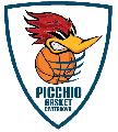https://www.basketmarche.it/immagini_articoli/08-02-2019/picchio-civitanova-scontro-diretto-conero-recrimina-alcune-scelte-arbitrali-120.png