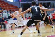 https://www.basketmarche.it/immagini_articoli/08-09-2018/sunrise-sport-errea-tigers-cesena-pallacanestro-palestrina-finale-battute-chieti-salerno-120.jpg