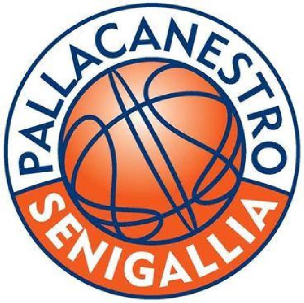 https://www.basketmarche.it/immagini_articoli/08-12-2018/tragedia-corinaldo-pallacanestro-senigallia-ferma-propria-attivit-weekend-600.jpg