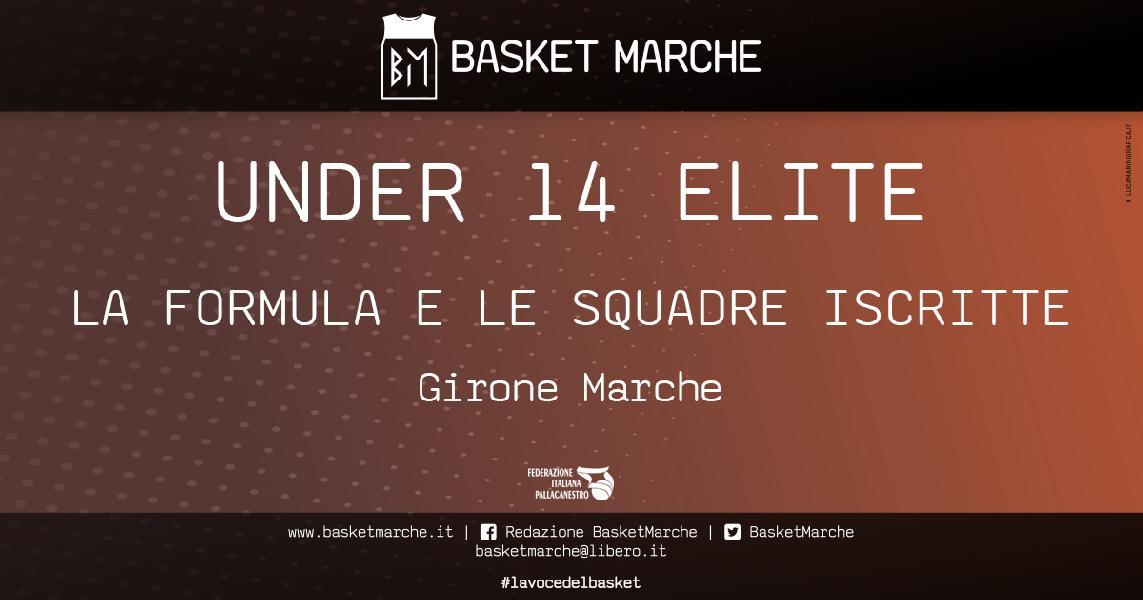 https://www.basketmarche.it/immagini_articoli/09-04-2021/under-elite-definita-formula-campionato-parte-domenica-maggio-squadre-iscritte-600.jpg