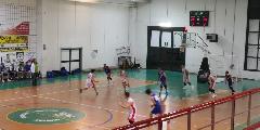https://www.basketmarche.it/immagini_articoli/09-12-2018/regionale-live-girone-umbria-gare-domenica-tempo-reale-120.jpg