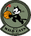 https://www.basketmarche.it/immagini_articoli/10-05-2018/promozione-playoff-gara-1-i-wildcats-pesaro-superano-la-dinamis-falconara-120.png