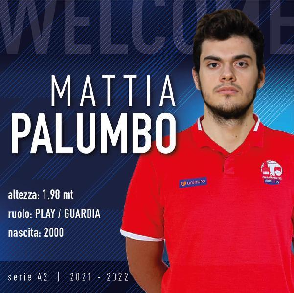 https://www.basketmarche.it/immagini_articoli/10-07-2021/ufficiale-mattia-palumbo-giocatore-pallacanestro-2015-forl-600.jpg