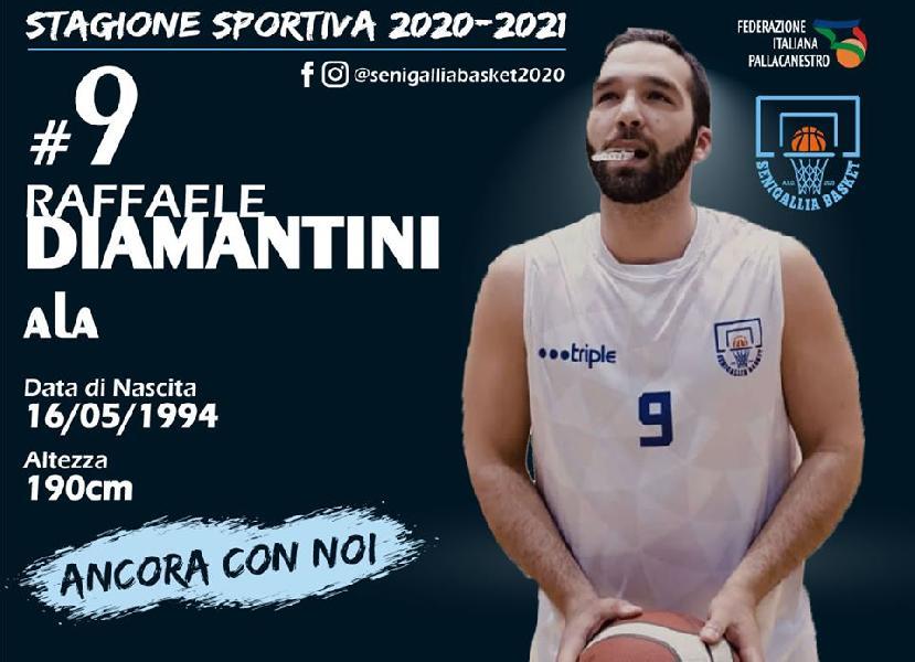 https://www.basketmarche.it/immagini_articoli/10-08-2020/ufficiale-senigallia-basket-2020-capitan-raffaele-diamantini-insieme-anche-prossima-stagione-600.jpg