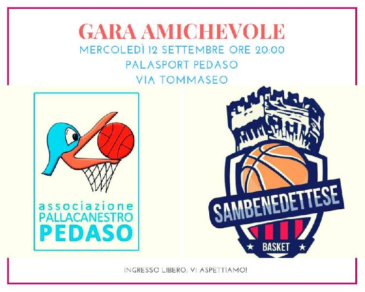 https://www.basketmarche.it/immagini_articoli/11-09-2018/serie-gold-sambenedettese-basket-ospite-pallacanestro-pedaso-seconda-uscita-stagionale-600.jpg