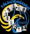 https://www.basketmarche.it/immagini_articoli/11-09-2020/falkodinamis-falconara-ufficializzato-roster-2021-sono-acquisti-120.jpg