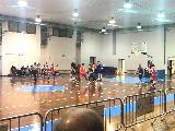 https://www.basketmarche.it/immagini_articoli/12-02-2020/wispone-taurus-jesi-coach-filippetti-pessimo-approccio-gara-bravissimi-reagire-120.jpg