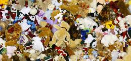 https://www.basketmarche.it/immagini_articoli/12-12-2018/tutte-societ-volete-organizzare-anche-teddy-bear-toss-scoprite-fare-120.jpg