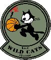 https://www.basketmarche.it/immagini_articoli/13-02-2020/recupero-ritorno-wildcats-pesaro-superano-volata-vuelle-120.png