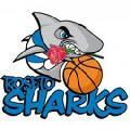 https://www.basketmarche.it/immagini_articoli/13-03-2020/roseto-sharks-chiedono-sospensione-definitiva-campionato-120.jpg