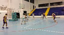 https://www.basketmarche.it/immagini_articoli/13-11-2018/punto-quattro-gironi-dopo-ultimo-turno-sette-squadre-punteggio-pieno-120.jpg
