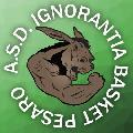 https://www.basketmarche.it/immagini_articoli/13-12-2017/promozione-b-l-ignorantia-pesaro-ferma-la-corsa-della-dinamis-falconara-120.jpg