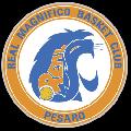 https://www.basketmarche.it/immagini_articoli/14-11-2016/under-14-regionale-il-real-basket-club-pesaro-cade-in-casa-contro-urbania-120.png