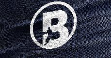 https://www.basketmarche.it/immagini_articoli/15-05-2020/bramante-pesaro-andrea-piccini-capitano-micheal-bertoni-commentano-chiusura-stagione-120.png