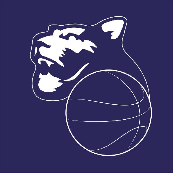 https://www.basketmarche.it/immagini_articoli/15-06-2021/panthers-roseto-giocano-prima-finale-campo-raffaele-roma-600.png