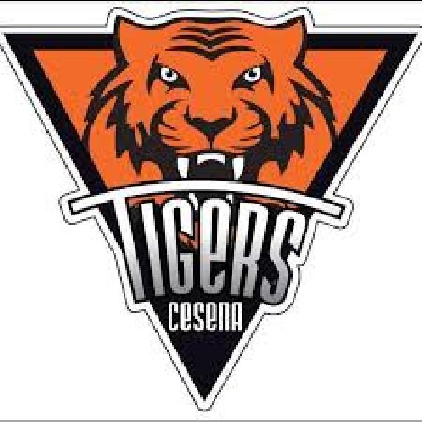 https://www.basketmarche.it/immagini_articoli/16-02-2021/ufficiale-davide-tassinari-allenatore-tigers-cesena-600.jpg