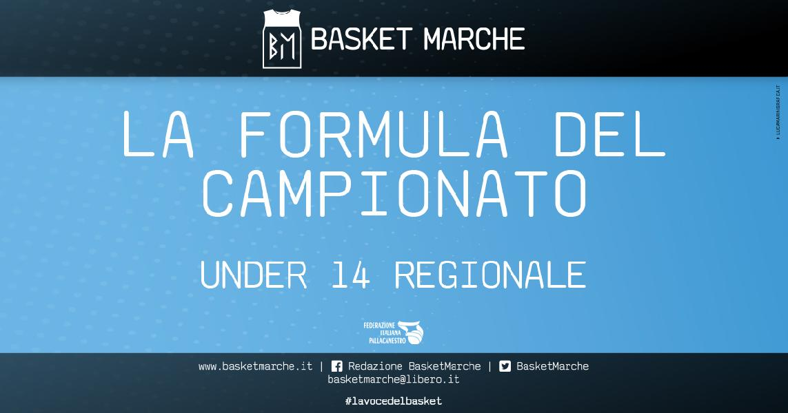 https://www.basketmarche.it/immagini_articoli/16-04-2021/under-regionale-definita-formula-campionato-squadre-iscritte-parte-maggio-600.jpg