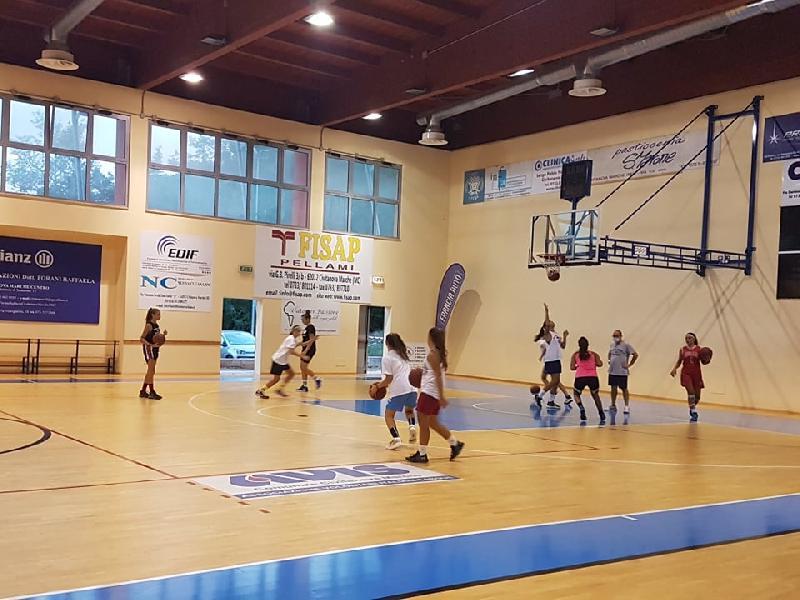https://www.basketmarche.it/immagini_articoli/16-09-2020/feba-civitanova-ripartita-attivit-tutto-settore-giovanile-600.jpg