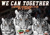 https://www.basketmarche.it/immagini_articoli/17-08-2019/together-campagna-abbonamenti-tigers-cesena-120.jpg