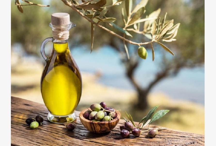 https://www.basketmarche.it/immagini_articoli/17-09-2018/sport-salute-olio-oliva-toccasana-naturale-indispensabile-tavola-600.jpg